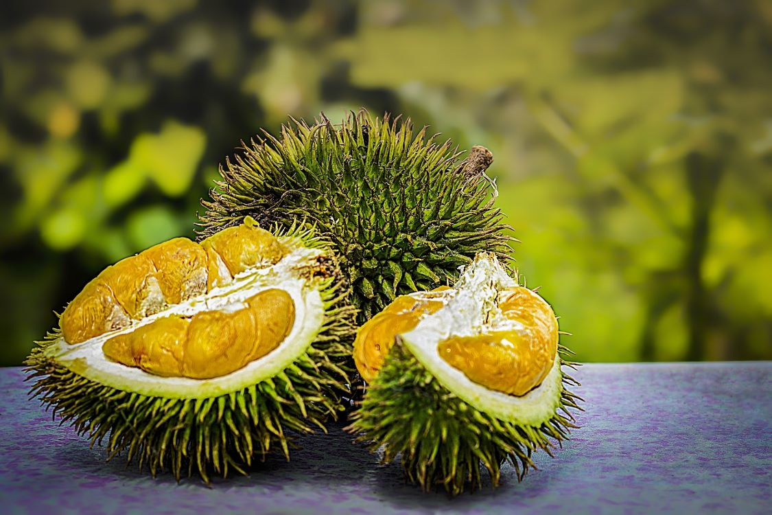 Health Benefits of Eating Fresh and Tasty Durian – Facts You Should Keep in Mind